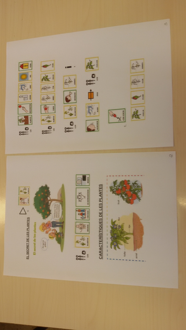 Adaptation of Social Sciences and Natural Sciences materials for non-readers in the first cycle of primary school.